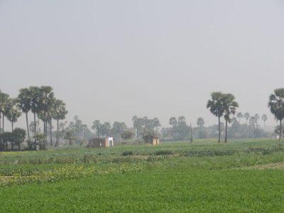 インド 風景