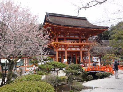 桜 楼門 賀茂別雷神社