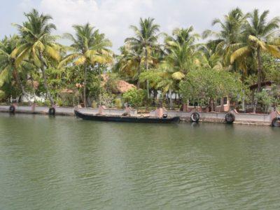 ボート 椰子の木