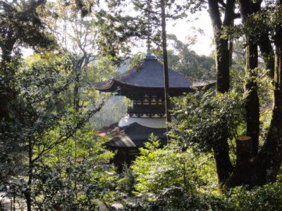 寺院の多宝塔
