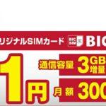 BIC SIMのキャンペーン
