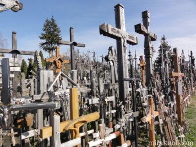 沢山の十字架