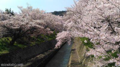 滋賀の琵琶湖疏水