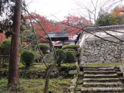 三井寺の風景