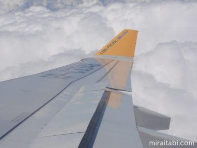 航空機の翼