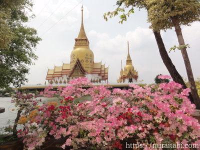 ピンクの花と寺院