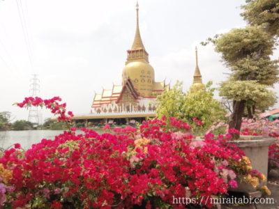 赤い花と寺院