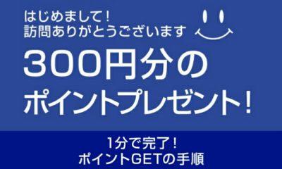 300円ポイント