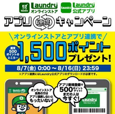 Laundryのキャンペーン