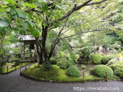 寂光院の庭園